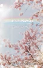 the runaway | lookism x reader by yoongicorn_93