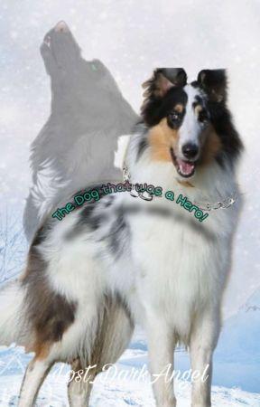 The Dog that was a Hero(Abgeschlossen) by Lost_DarkAngel
