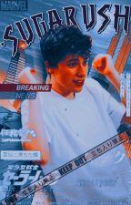 simp king    georgenotfound x reader by -sugarush
