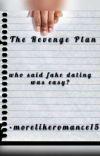 The Revenge Plan cover