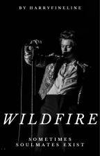 Wildfire - H.S by harryfineline