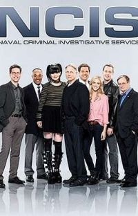 NCIS x male reader cover