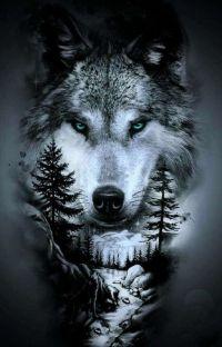 Werewolves - Glowing Eyes (Under Redigering) cover