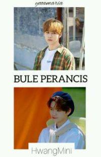 [6] BULE PERANCIS || HwangMini cover