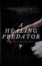 A Healing Predator by villobarton