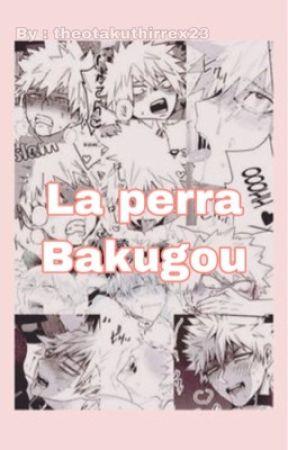 La perra de Bakugou (one-shots) by theotakuthirrex23