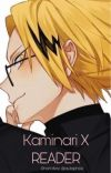 Kaminari x Reader [completed] cover