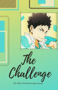 The Challenge || H. IwaizumixReader - Soulmate! AU [ON HOLD] cover