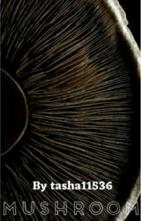 Mushroom by Tasha11536