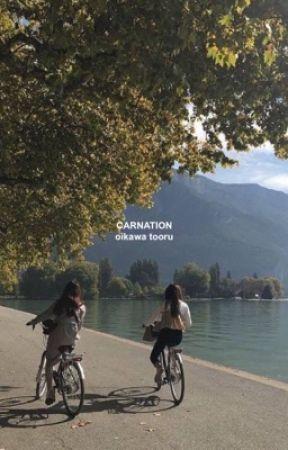 carnation by SATORULUVR