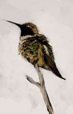 Free Bird by Miqki12-9