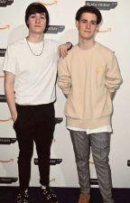 Max And Harvey Gay Oneshots by marveyfan106
