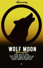 wolf moon: graveyard ♝ sterek, de xbeauxny