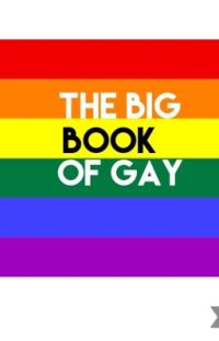 Big Book Of Gay cover