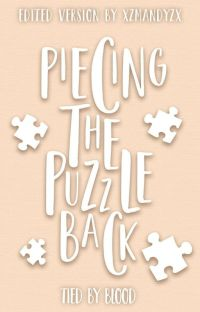 Piecing The Puzzle Back (Edited Version) cover