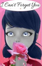 I can't forget you. by MiraculousForeverFan