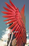 Love Me (Hawks x Fem Reader)  cover