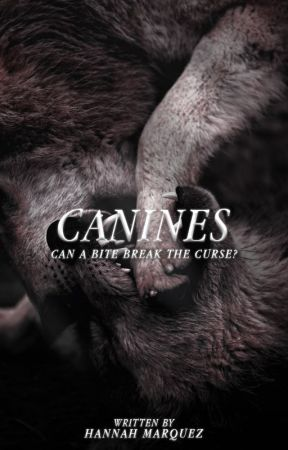 Canines by honeyfatale