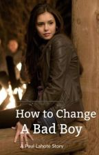 How to Change A Bad Boy by meganxwriter