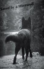 Saved by a Werewolf by Cassandra_Marie1025