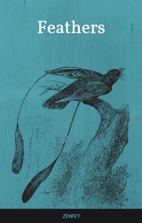 Feathers by zenfey