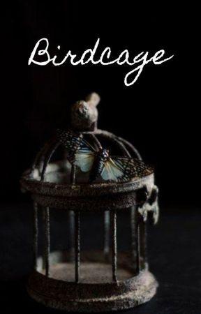 Birdcage by SilverPriestess