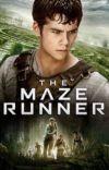 The Maze Runner (Thomas x Reader) cover