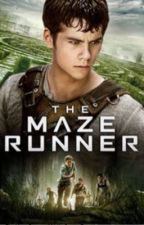 The Maze Runner (Thomas x Reader) by Avengers1981