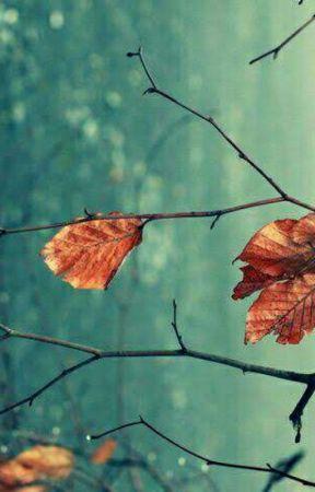 ازهار الخريف Autumn leaves by Ro_selia