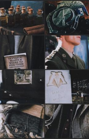 I Loved You Mr. Scamander by justawritter2902