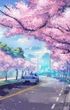 Spring Breeze [Haikyuu x Male Reader] by JoyDreamer741