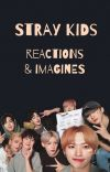 REACTIONS STRAYKIDS cover