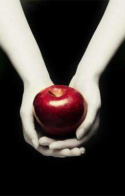 Đọc truyện Xuyên không vào thế giới của Twilight