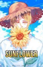 Sunflower (KuroKen Haikyuu!!) by keijii_akaashi