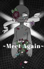 -Meet Again-Countryhumans/Countryballs x reader by Taly-16