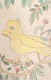 Yolanda the yellow bird  cover