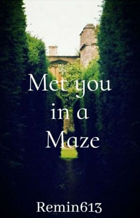 Met you in a maze by remin613