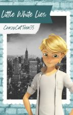 Little White Lies *A ChatNoirxReader Fanfiction* -The Eye of the Black Cat Pt.2- by CrazyCatTeen35