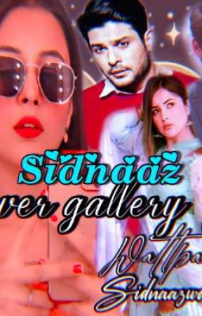 sidnaaz___cover gallery  by sidxnaaz_world