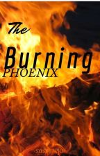 The Burning Phoenix || {Seven Deadly Sins Fanfic} by Sassytrio