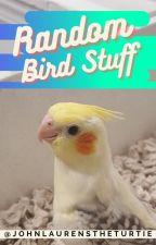 Random Bird Stuff by JohnLaurensTheTurtIe