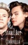 Stable Boy ~ Cinderella  Narry Storan  cover