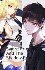 Sword Princess And Shadow Prince (Aiz X Male Reader) by xSin-Kunx