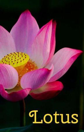 Lotus (Legends Of Tomorrow - Sara Lance) by Providentia-