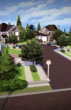 Neighbourhood drama (HTTYD-fic) by Vala411