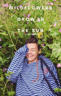 wildflowers grow in the sun cover