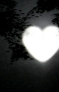 Vampire-𝕄𝕒𝕥𝕥𝕚𝕒 ℙ𝕠𝕝𝕚𝕓𝕚𝕠 cover
