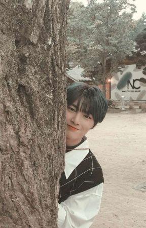 smile flower 「 jeongin 」 by kimsnluv