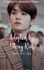 Adopted by Stray Kids  by me_loves_kpop