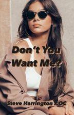 Don't Want Me? (Steve Harrington x OC) by the_june_bug_